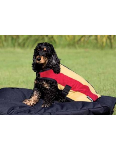 Manteau Chien Horseware Rambo Deluxe rayé gold