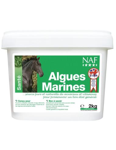 NAF Algues marines