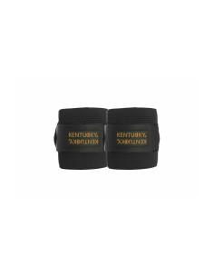 Bandes de polo Kentucky + élastiques