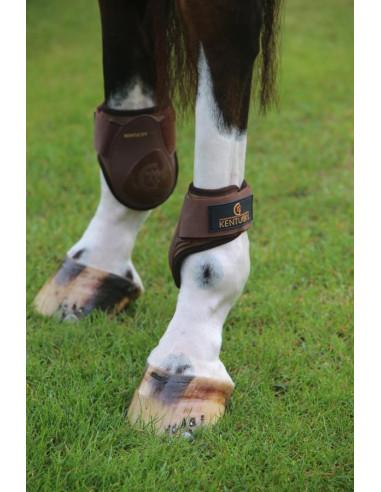Protège-boulets Kentucky Deep Young Horse marron