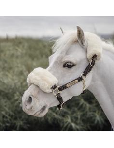 Licol Kentucky en Cuir Mouton