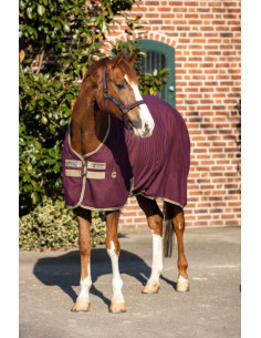 Chemise Horseware Amigo Stable Sheet figue/beige