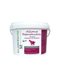 Alliance Reproduction Alliance Equine