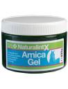 NAF NaturalintX Arnica Gel