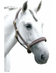 Licol Privilège Equitation La Baule marron