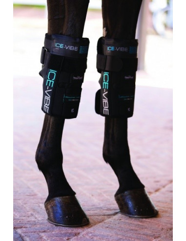 Guêtres Horseware Ice Vibe genoux