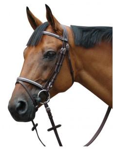 Bridon Privilège Equitation Deauville muserolle combinée