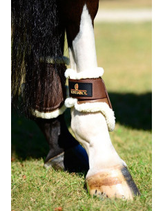 Protège-Boulets Kentucky Mouton Jeunes Chevaux
