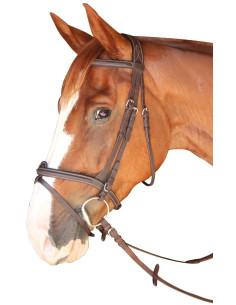 Bridon Privilège Equitation Dinard