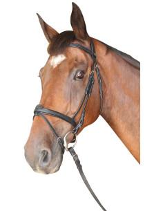 Bridon Privilège Equitation Cabourg