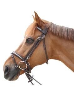 Bridon Privilège Equitation Lacanau