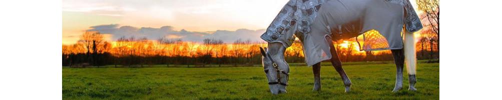 Produits anti-mouches pour chevaux | Bien être du cheval