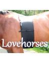Lovehorses